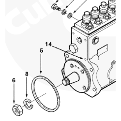 94-98 Dodge 5.9L Cummins P7100 Injection Pump Seal Ring
